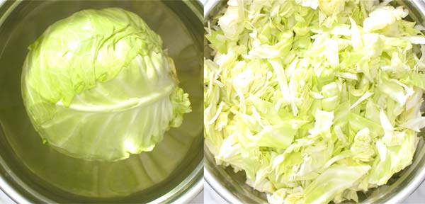 cutting the cabbage into strips