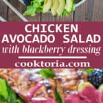 Scrumptious combination of grilled paprika chicken, creamy avocados combined with fresh lettuce, blackberries and topped with tangy blackberry dressing. This Chicken Avocado Salad makes a perfect and filling lunch! ❤ COOKTORIA.COM