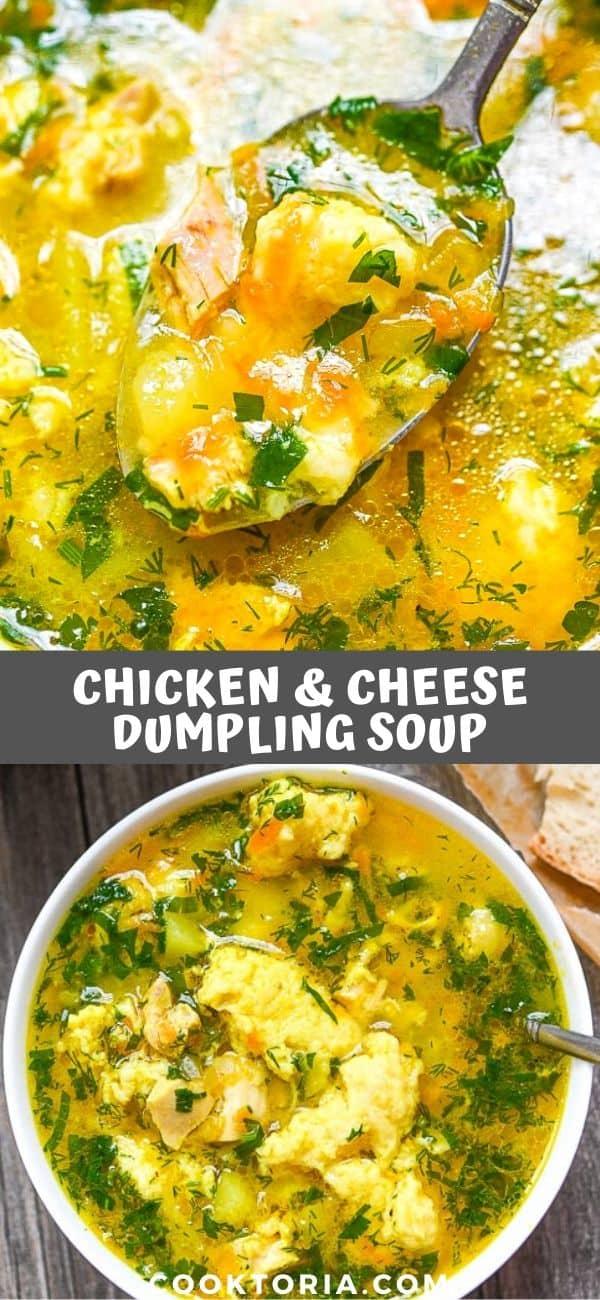 Chicken Dumpling Soup on the Spoon